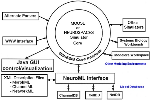 Neural Modelling with PHP and PostgreSQL